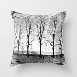 Trees Up in the Park Throw Pillow