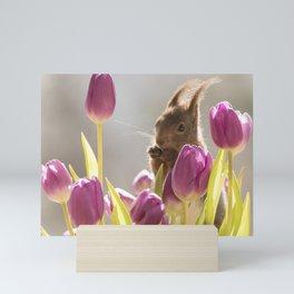 squirrel between purple tulips Mini Art Print