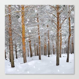 """Into the deep forest. Snowing"" Canvas Print"