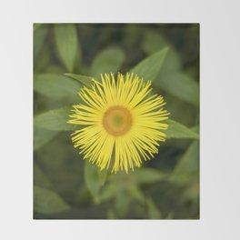 Doronicum Caucasicum Throw Blanket