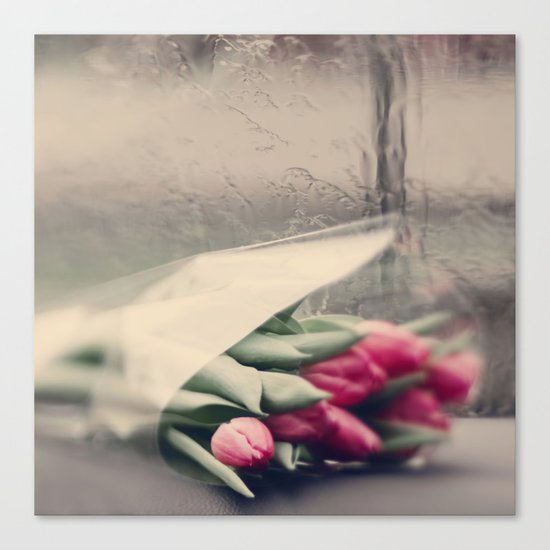 tulips on a rainy day Canvas Print