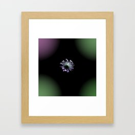 Cactus Flower in the Dark Framed Art Print