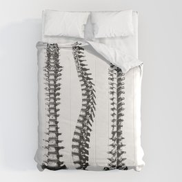 Bone column Comforters
