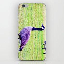 Canada Goose iPhone Skin