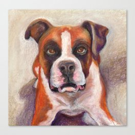 Rascal the Boxer Canvas Print