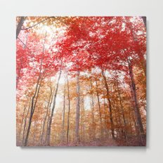 Red and Gold Metal Print