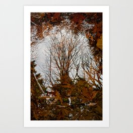 Reflektor Art Print