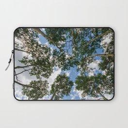 Aspen trees in Montana, taken along the Beartooth Highway Laptop Sleeve