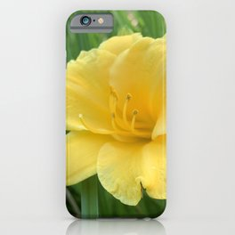 Lily Sunshine iPhone Case