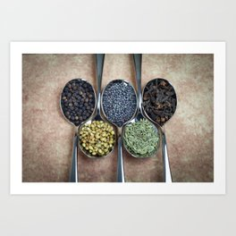 Indian Spices Art Print