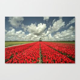 Tulip Windmill  Canvas Print