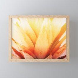 Pineapple#exposure#film#effect#closeup Framed Mini Art Print