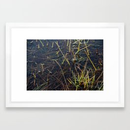 pool of water Framed Art Print