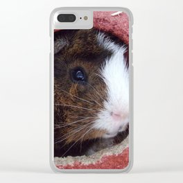 Mister Guinea Pig Clear iPhone Case