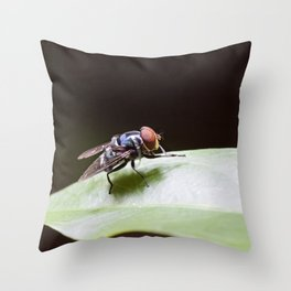 Blue Fly Throw Pillow