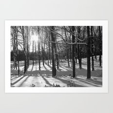 Sunburst Forest Art Print