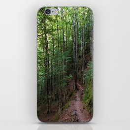 Pyrenees iPhone Skin