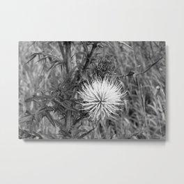 Simple Beauty Metal Print