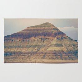 Petrified Desert Rug