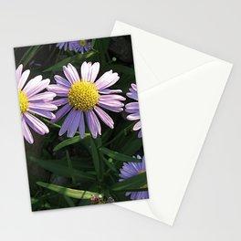 Korean Starwort (Aster Koraiensis) Flowers Stationery Cards