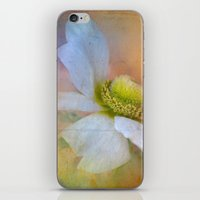 the strokes iPhone & iPod Skins featuring Bold Strokes by Teresa Pople