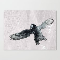 Soar the puffin Canvas Print