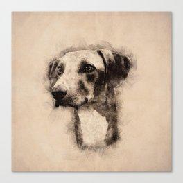 Azawakh Sighthound Sketch Canvas Print