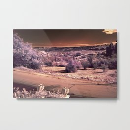 Sunny Snow (infrared) Metal Print