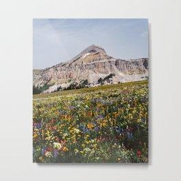 Fossil Mountain Wildflowers Metal Print