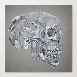 Skull Side  Canvas Print