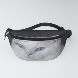 Ragdoll Cat Her Majesty Fanny Pack