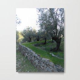 Earthscape Metal Print