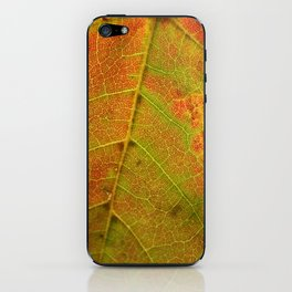 Autumn's Fire iPhone Skin