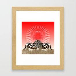 Zebras Framed Art Print