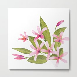 Tropical Pink Plumeria Metal Print