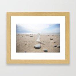 Beach feather Framed Art Print