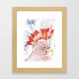 """Watercolor Painting of Picture """"Inca Cockatoo"""" Framed Art Print"""