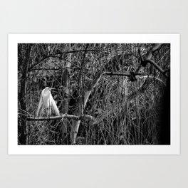 Bird in a Tree... Art Print