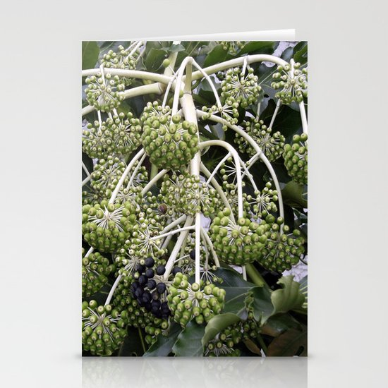 Green Buds Stationery Cards