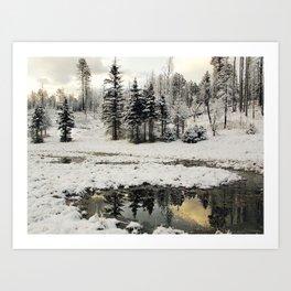 Winter Reflections Art Print