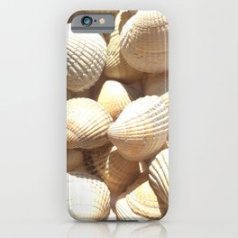 Sea Shells Collection iPhone Case