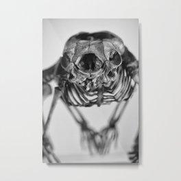 Strange skeleton Metal Print