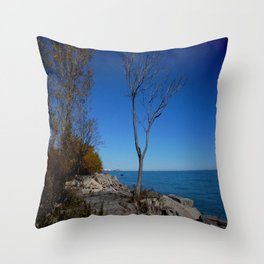 So Near, But Yet So Far #1 (Chicago Northerly Island Collection) Throw Pillow