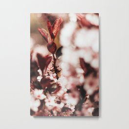 Red Leaf Blossom Metal Print