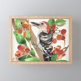 Cranapple Woodpecker Framed Mini Art Print