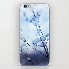 Winter 1 iPhone & iPod Skin