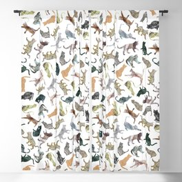 Nature Cats Blackout Curtain