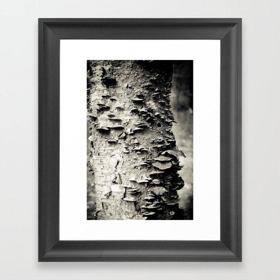 Study In Nature Framed Art Print