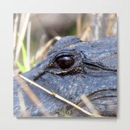 Watercolor Alligator 06, Okefenokee Swamp, Geogia, Gaze to Infinity Metal Print