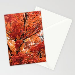 Red Fall 2 Stationery Cards